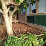 Nules realiza actuaciones de mejora en el patio del CEIP Pío XII