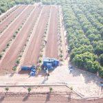 Nules es pionera en la provincia en el control de la campaña citrícola con drones