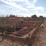 Nules pone en marcha la nueva adjudicación de los huertos urbanos